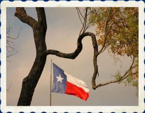 txflag.jpg