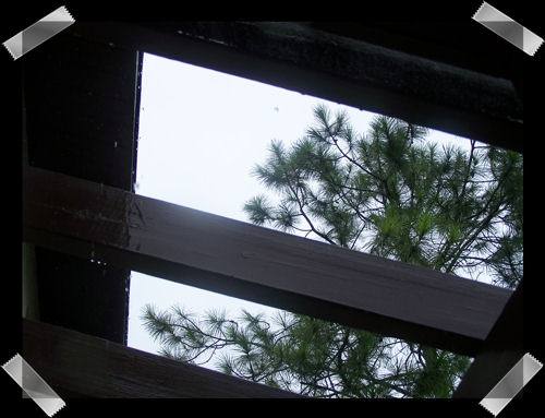 Looking up through our front porch.  It doesn't have a roof just the those beams.