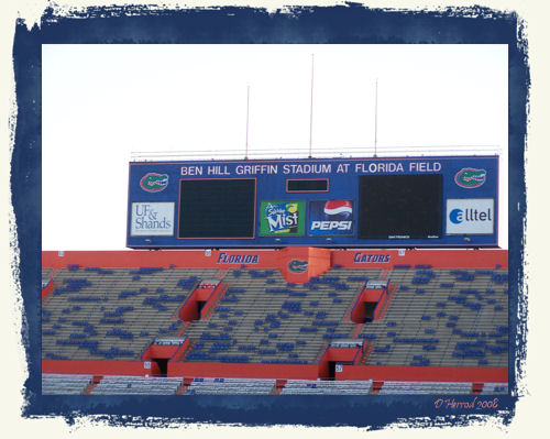 Inside The Swamp