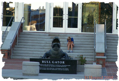 Bull Gator statue built in honor of the 2006 NCAA Football championship team.