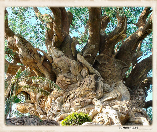 Close up of the Tree of Life