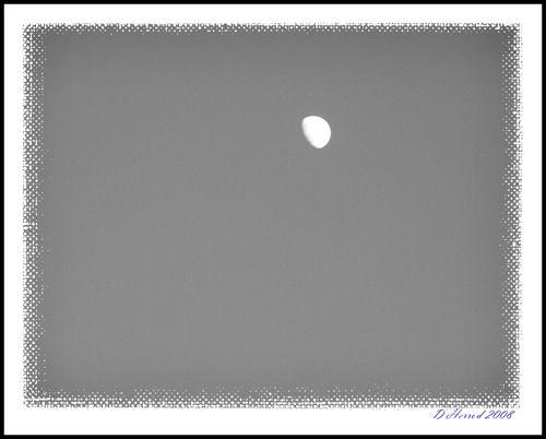 Taken using Black & white settings