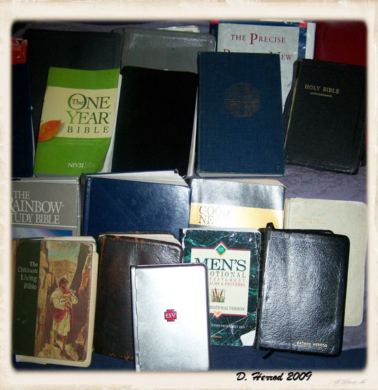 Some of the Bibles we have collected over the years.