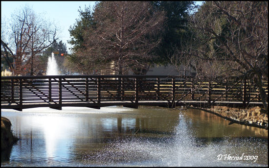 Reflection Pond and Leggit Bridge