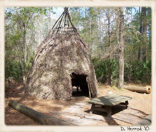 timucua indians the dee zone