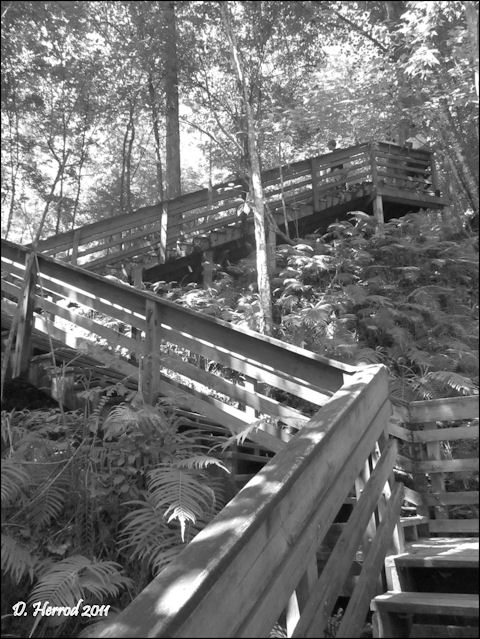 Boardwalk at Devil's Miller Hopper Geological State Park