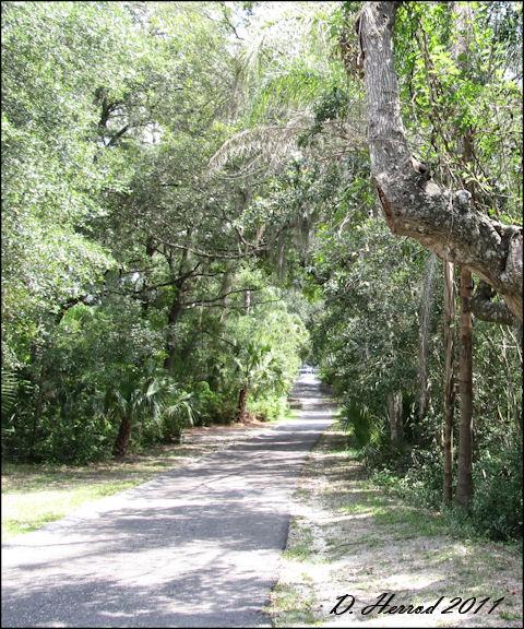 Driving path in Ravine Garden State Park
