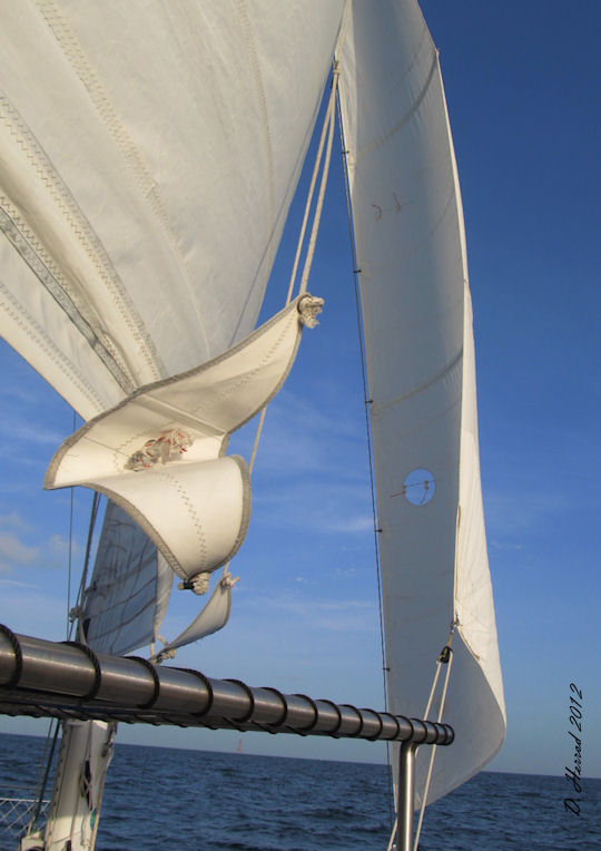 Sailing Catamaran Sirius