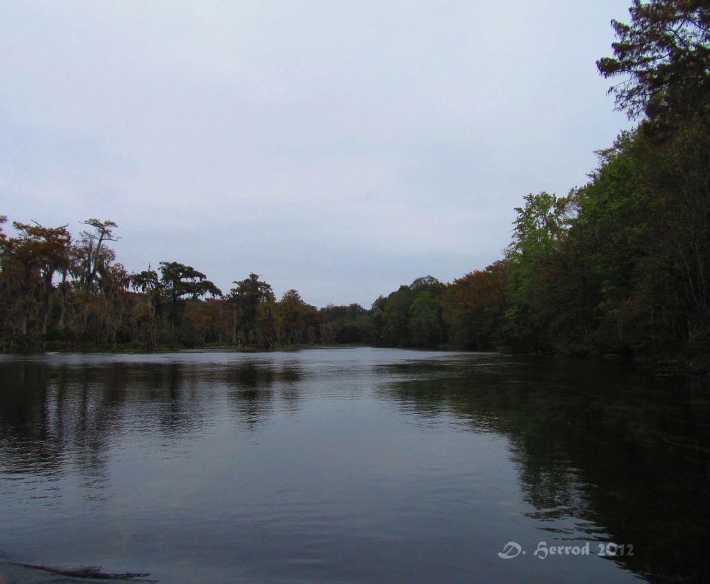 Wakulla River, Wakulla Springs, Florida