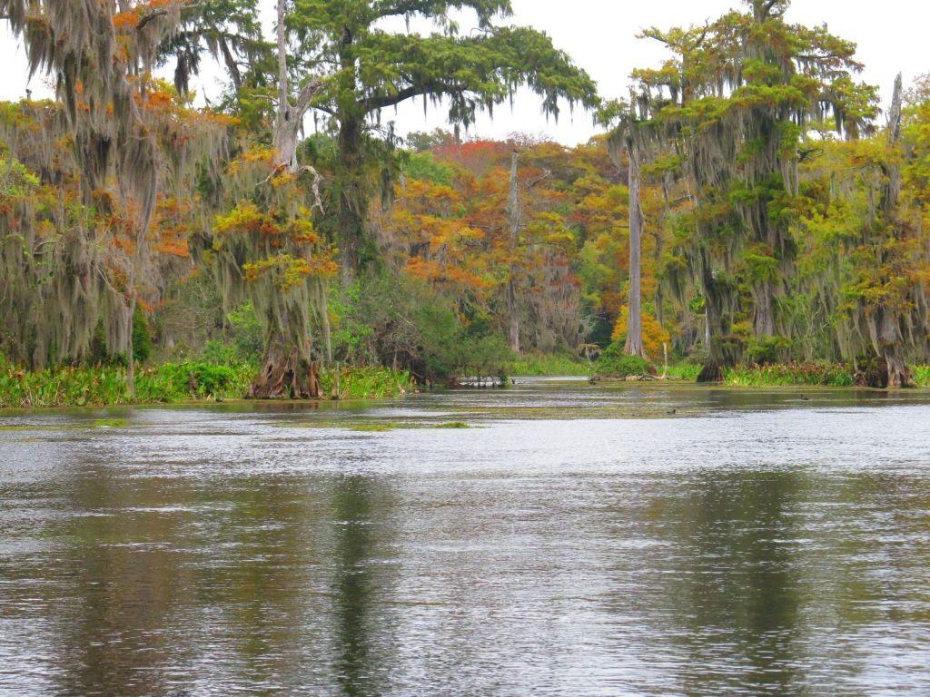 Wakulla River Florida