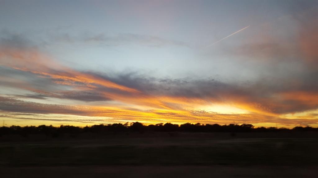 SunsetLibHill.jpg