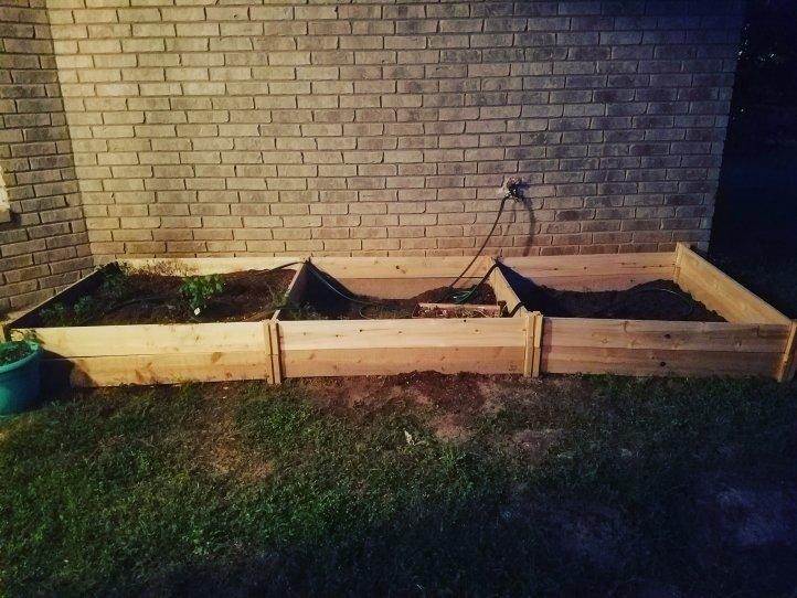 Raised Bed Garden Phase 2