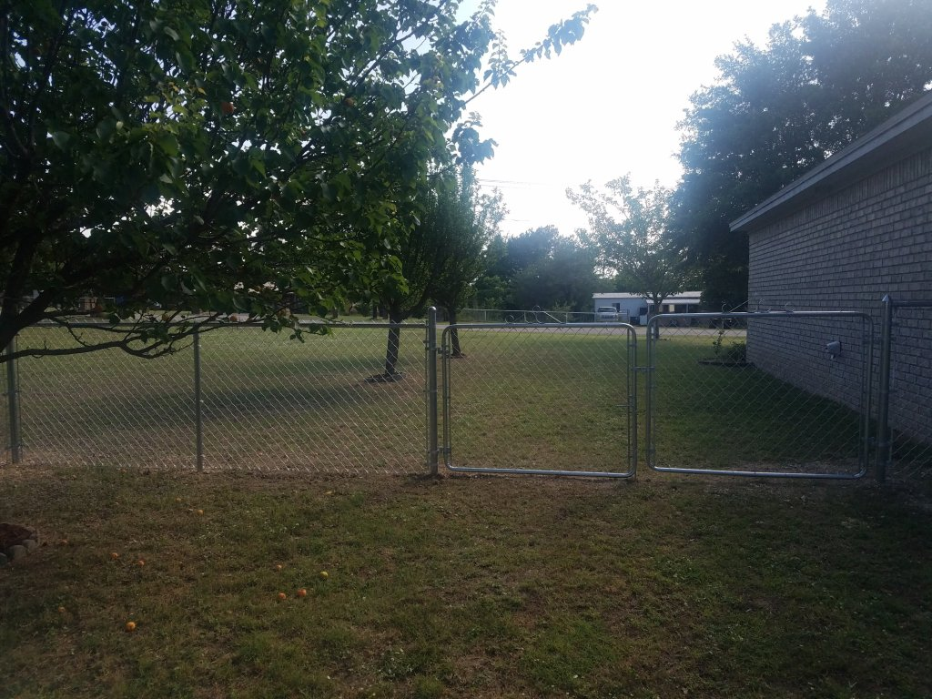 Maddie's fence