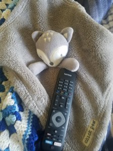 Maddie's Chic Pea stuffy with the Tv remote.