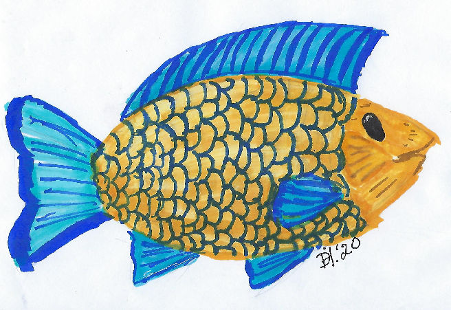 Ink drawing of a a fish